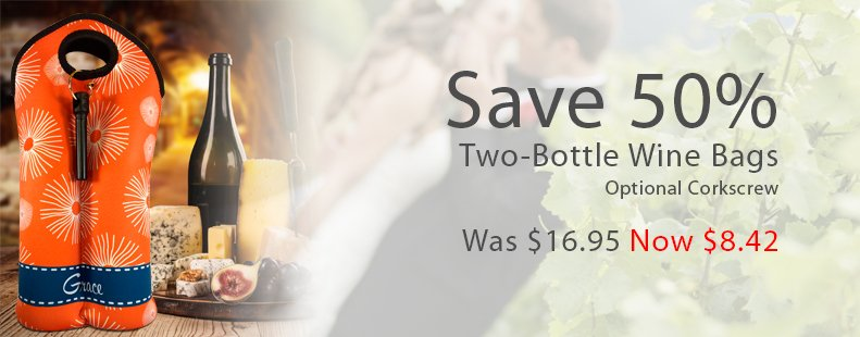 Best price on two bottle wine bags